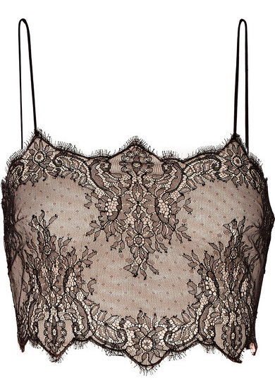 Antonio Berardi Cropped silk-lace and stretch-mesh top