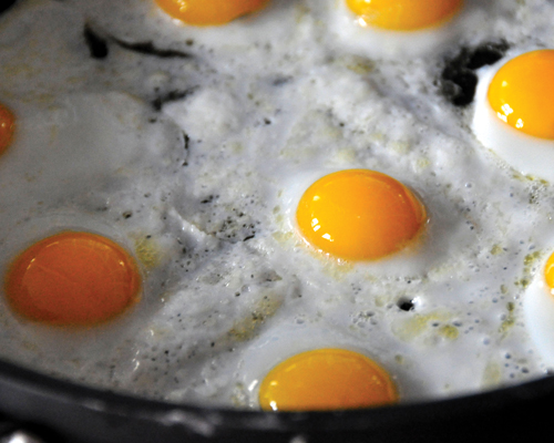 Egg whites and yolks alike are rich sources of several crucial nutrients
