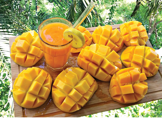 Mango king of all fruits