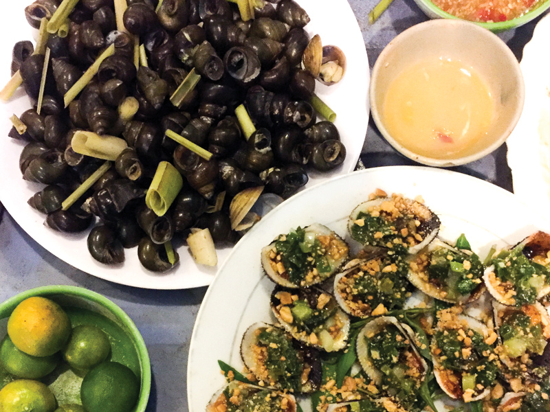 Mussels-and-snails-at-Ben-Tre