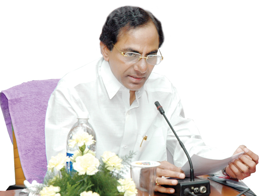 Telangana is celebrating its first anniversary