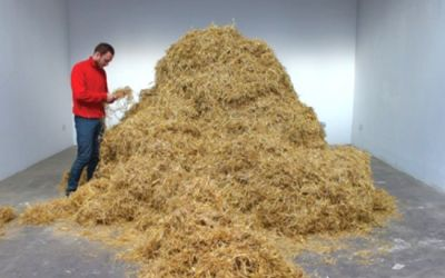 Artist finds needle in the haystack