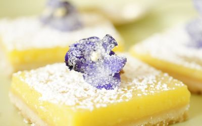 betty-lemon-square-reipe