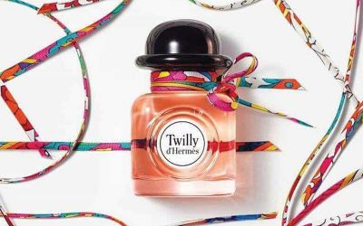 The New Twilly d'Hermès