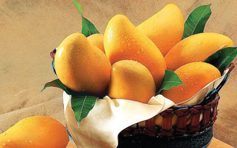 Mangos, King of fruits