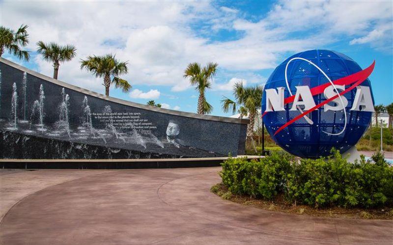 Space travel sets  off 'fireworks' of  gene expression:  NASA