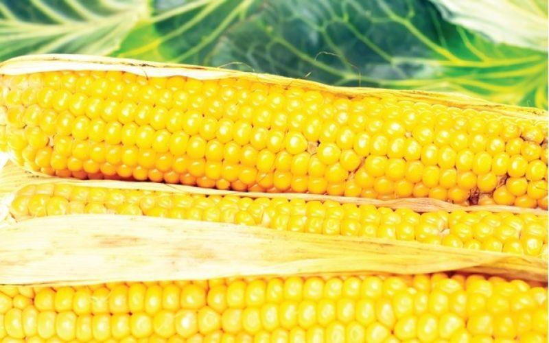 yellow-vegetable