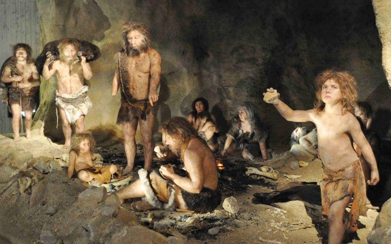 Prehistoric humans  purposely avoided inbreeding